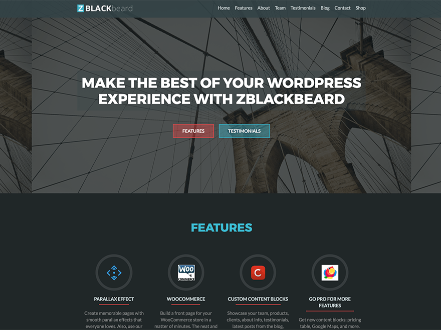 ZBlackbeard Download Free Wordpress Theme 5