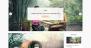 Bloomy Download Free WordPress Theme