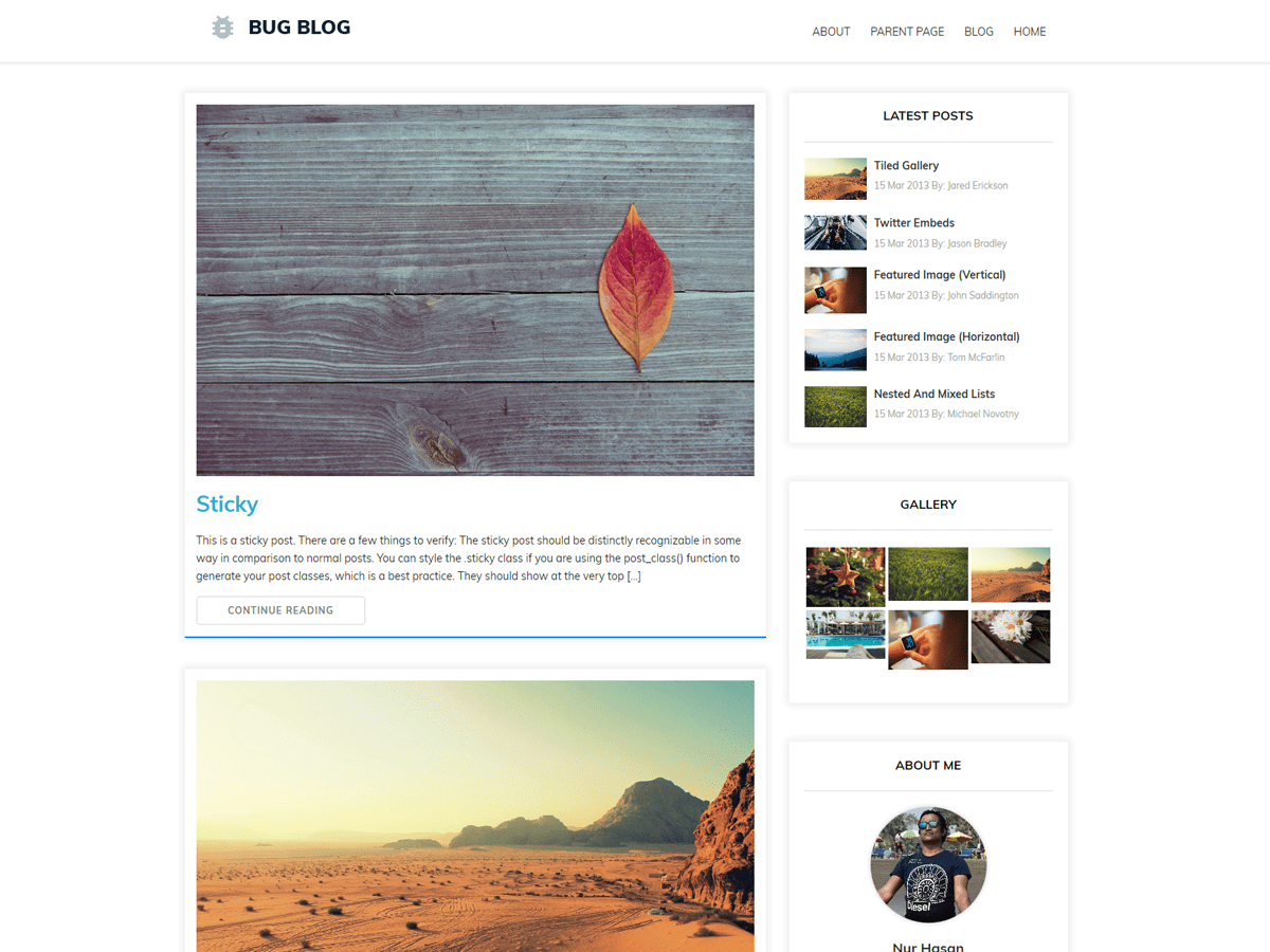 Bug Blog Download Free Wordpress Theme 4