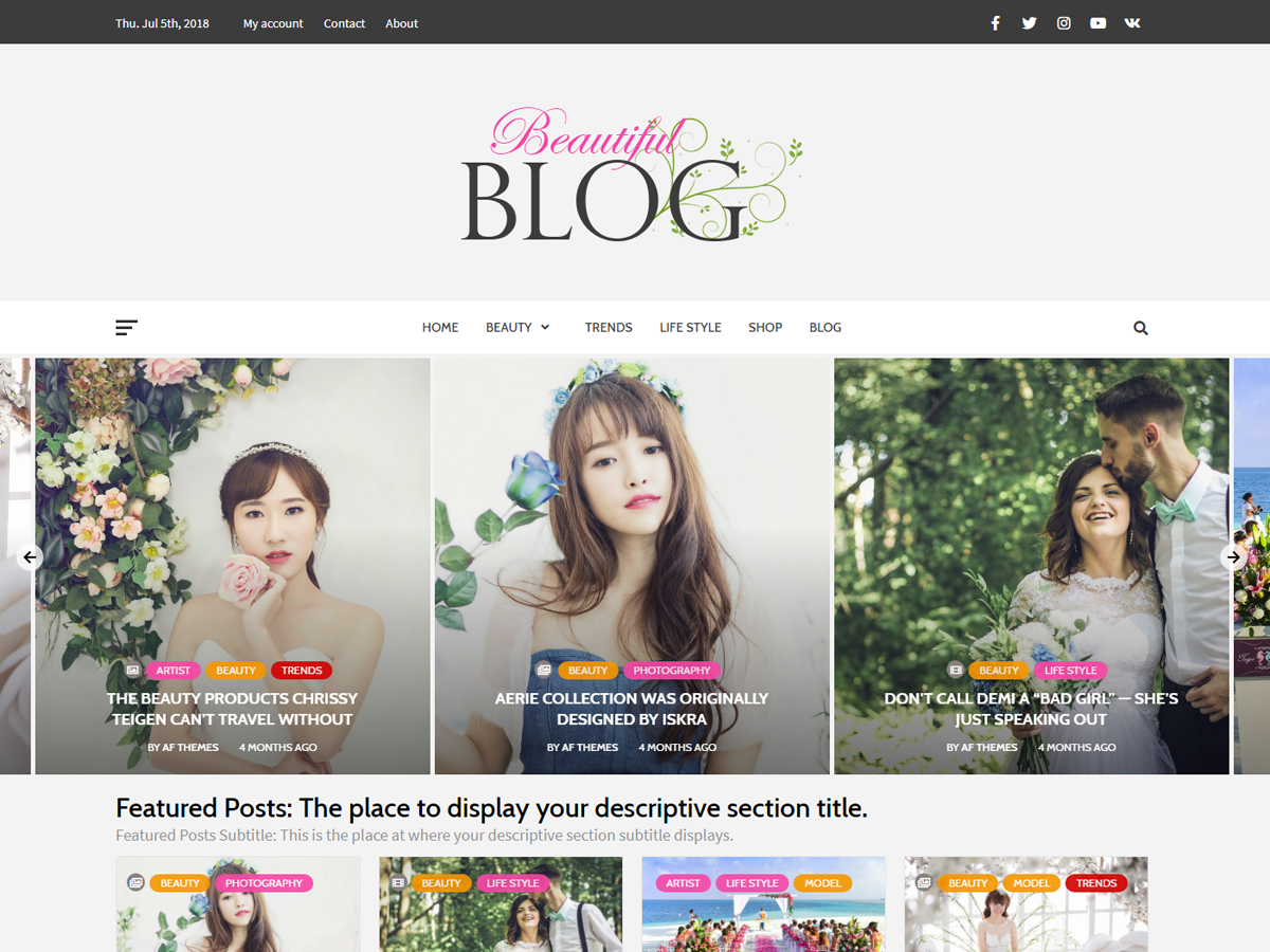 Beautiful Blog Download Free Wordpress Theme 4