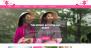 Feminine Pink Download Free WordPress Theme