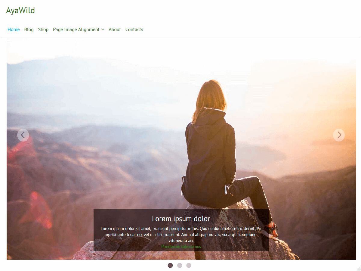 AyaWild Download Free Wordpress Theme 1
