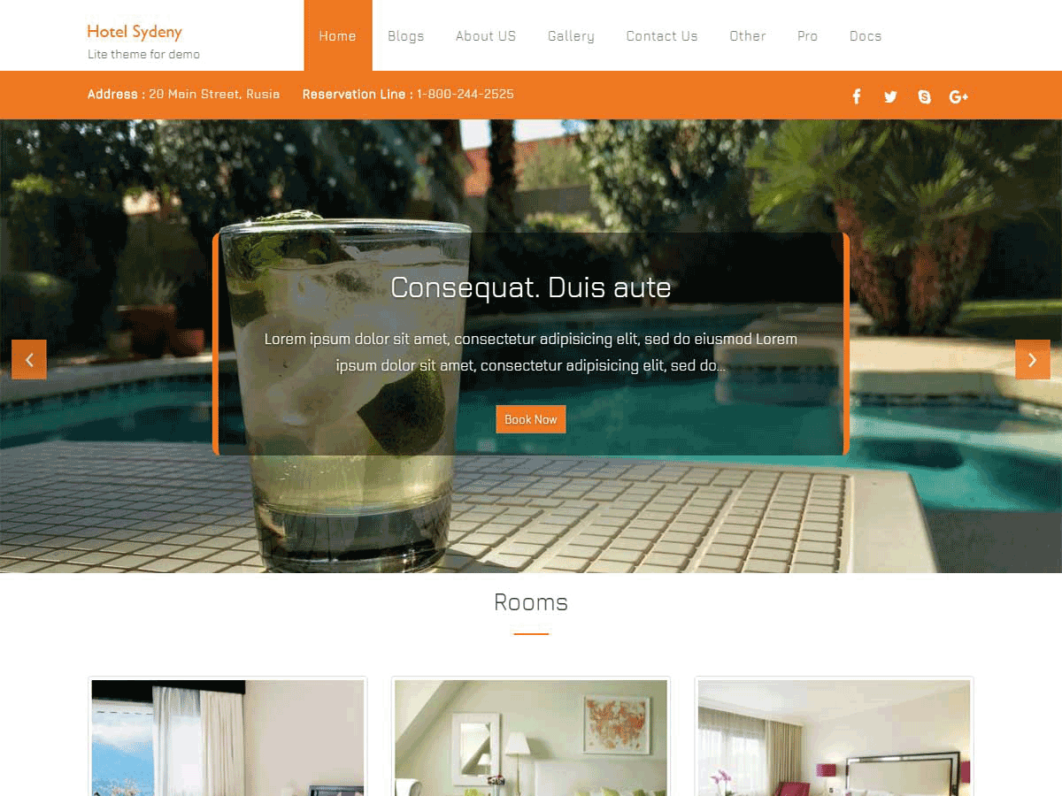 Hotel Sydney Download Free Wordpress Theme 4