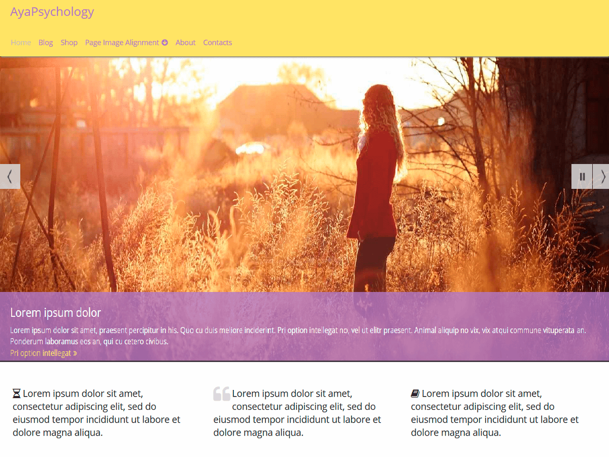 AyaPsychology Download Free Wordpress Theme 4