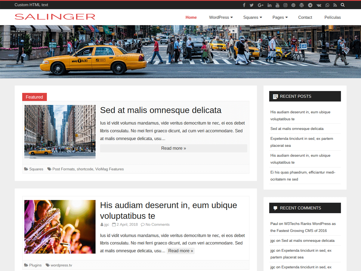 Salinger Download Free Wordpress Theme 3