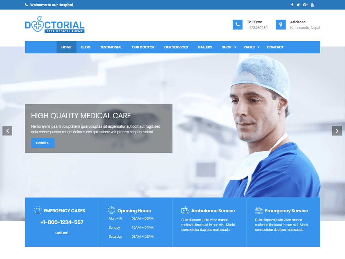 Doctorial Download Free Wordpress Theme 2