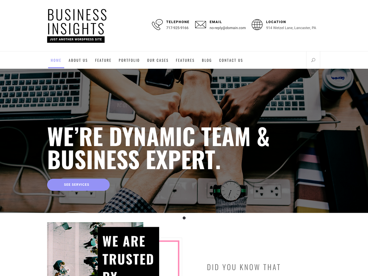 Business Insights Download Free Wordpress Theme 2