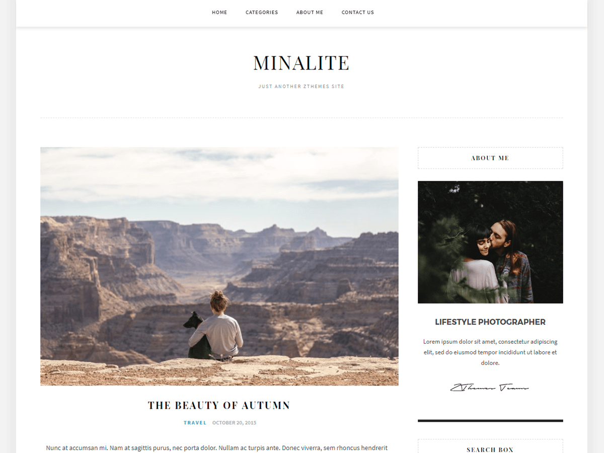 MinaLite Download Free Wordpress Theme 3