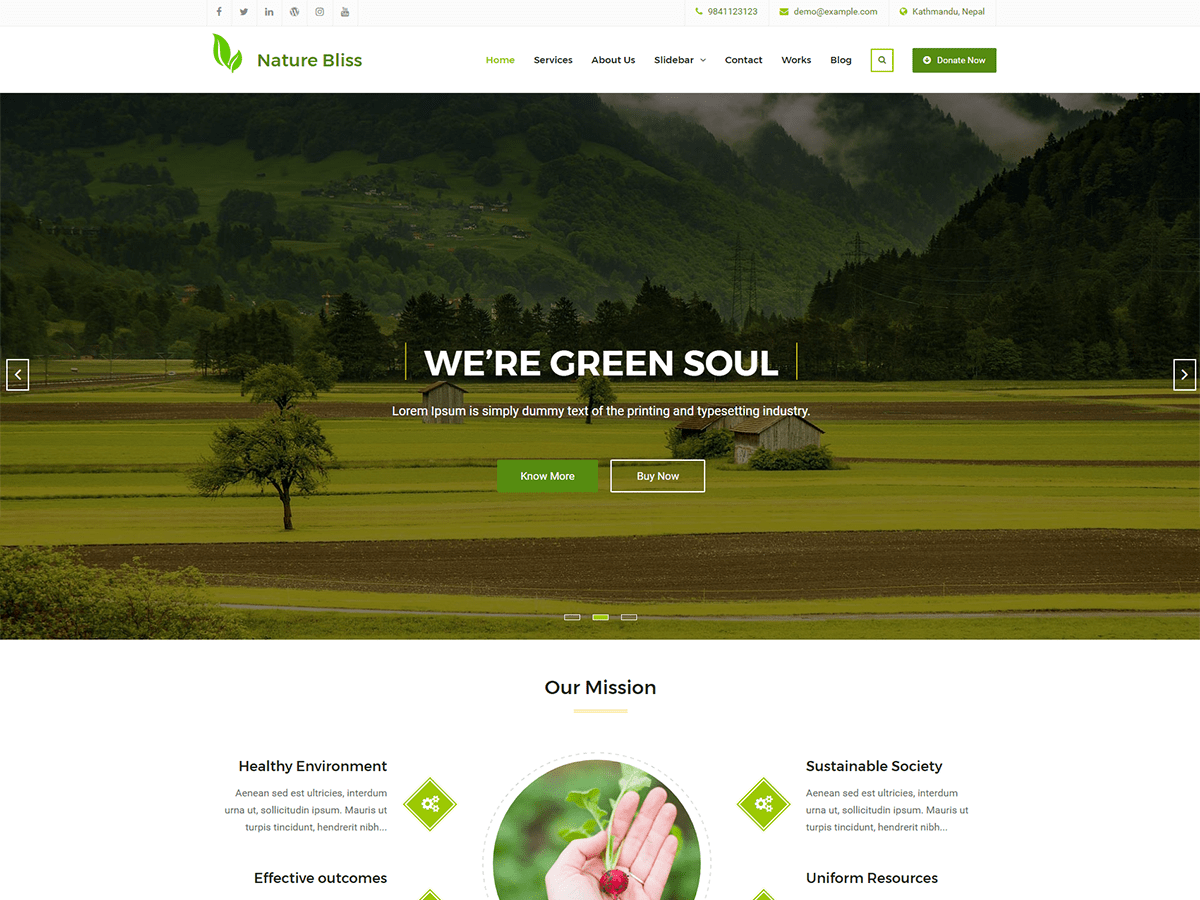 Nature Bliss Download Free Wordpress Theme 4