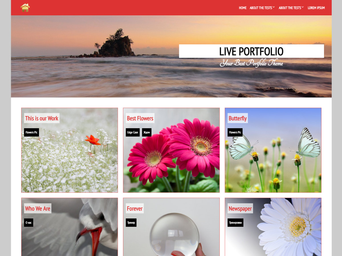 Live Portfolio Download Free Wordpress Theme 2