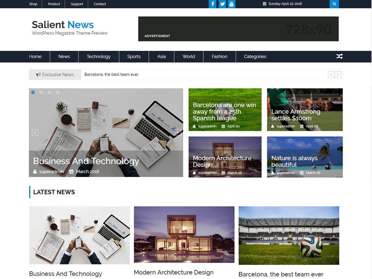 Salient News Download Free Wordpress Theme 4
