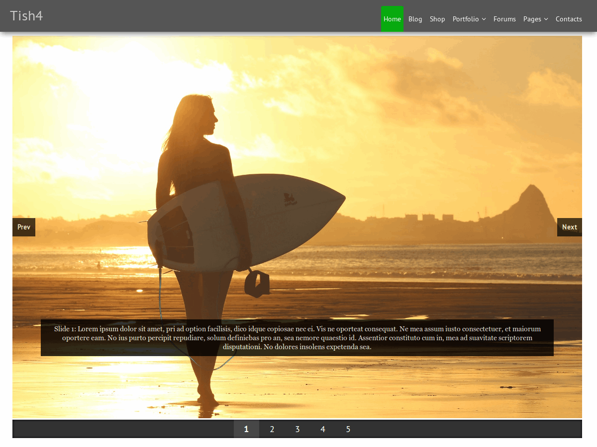 Tish4 Download Free Wordpress Theme 4