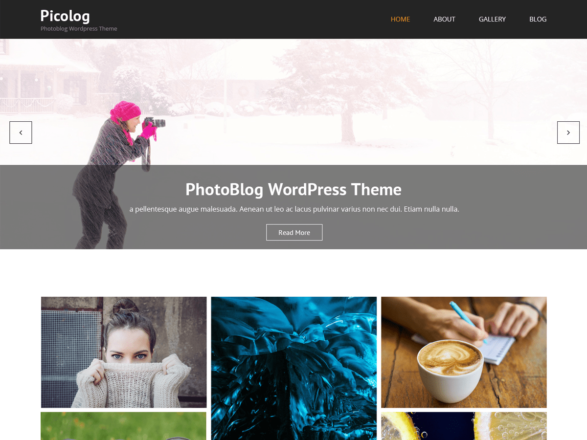 Picolog Download Free Wordpress Theme 2