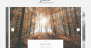 Jane Lite Download Free WordPress Theme