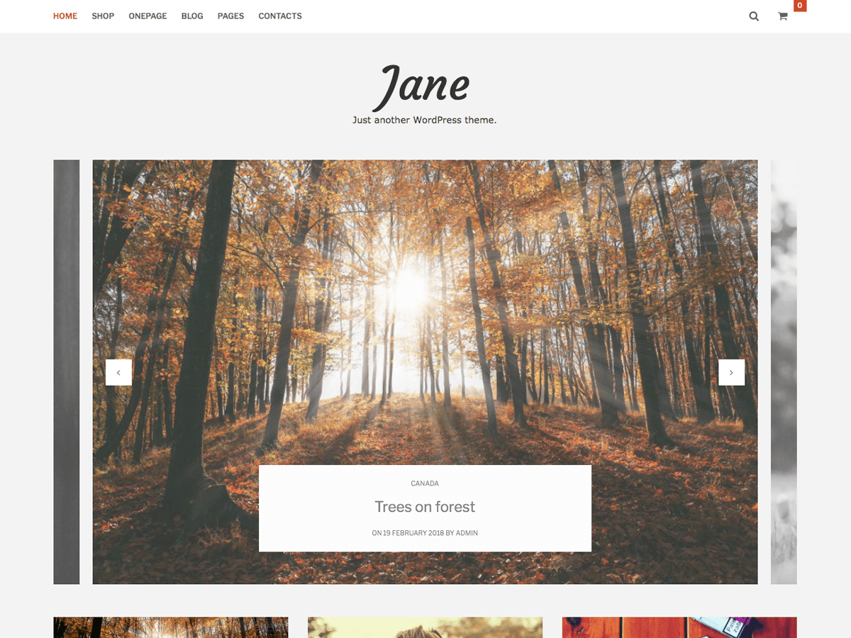 Jane Lite Download Free Wordpress Theme 3
