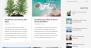 Best Minimalist Download Free WordPress Theme
