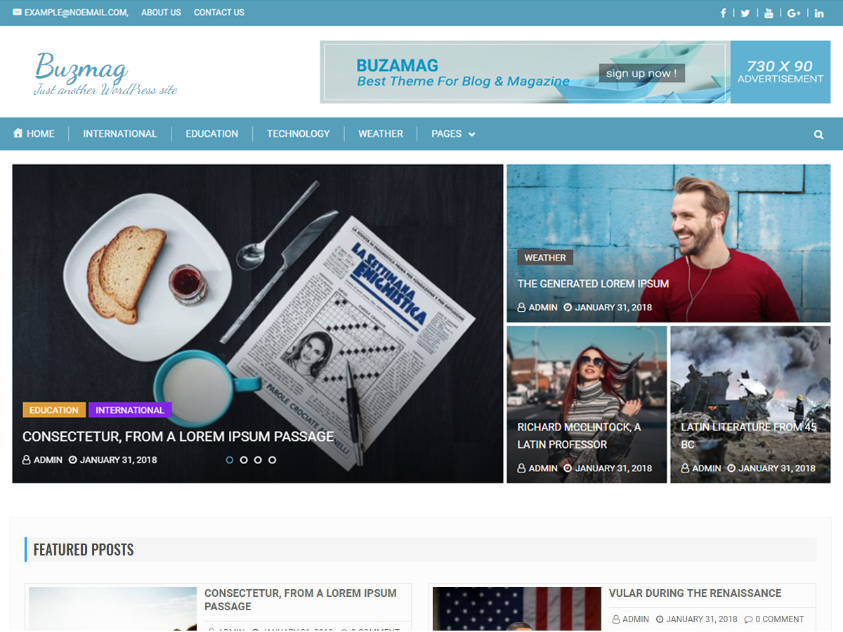 Buzmag Download Free Wordpress Theme 2