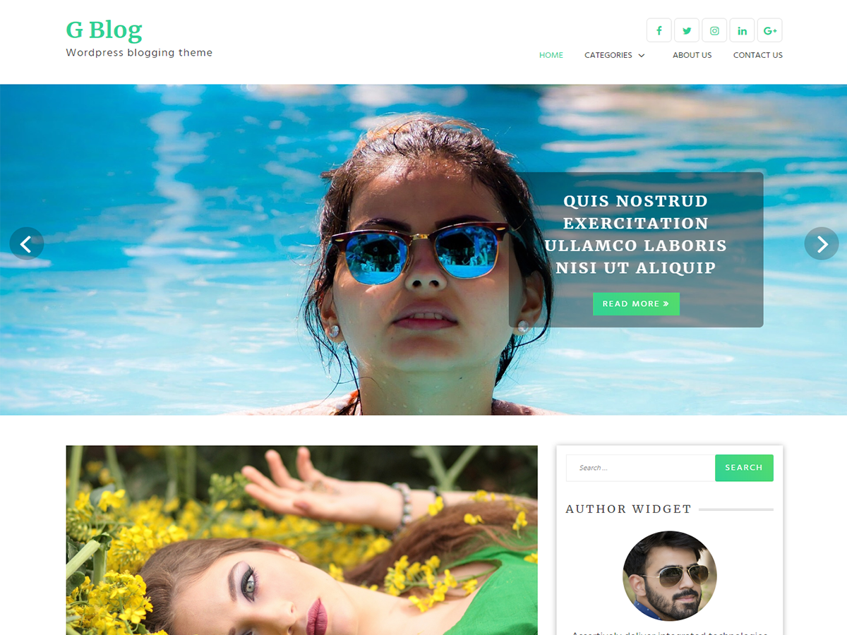 G Blog Download Free Wordpress Theme 2