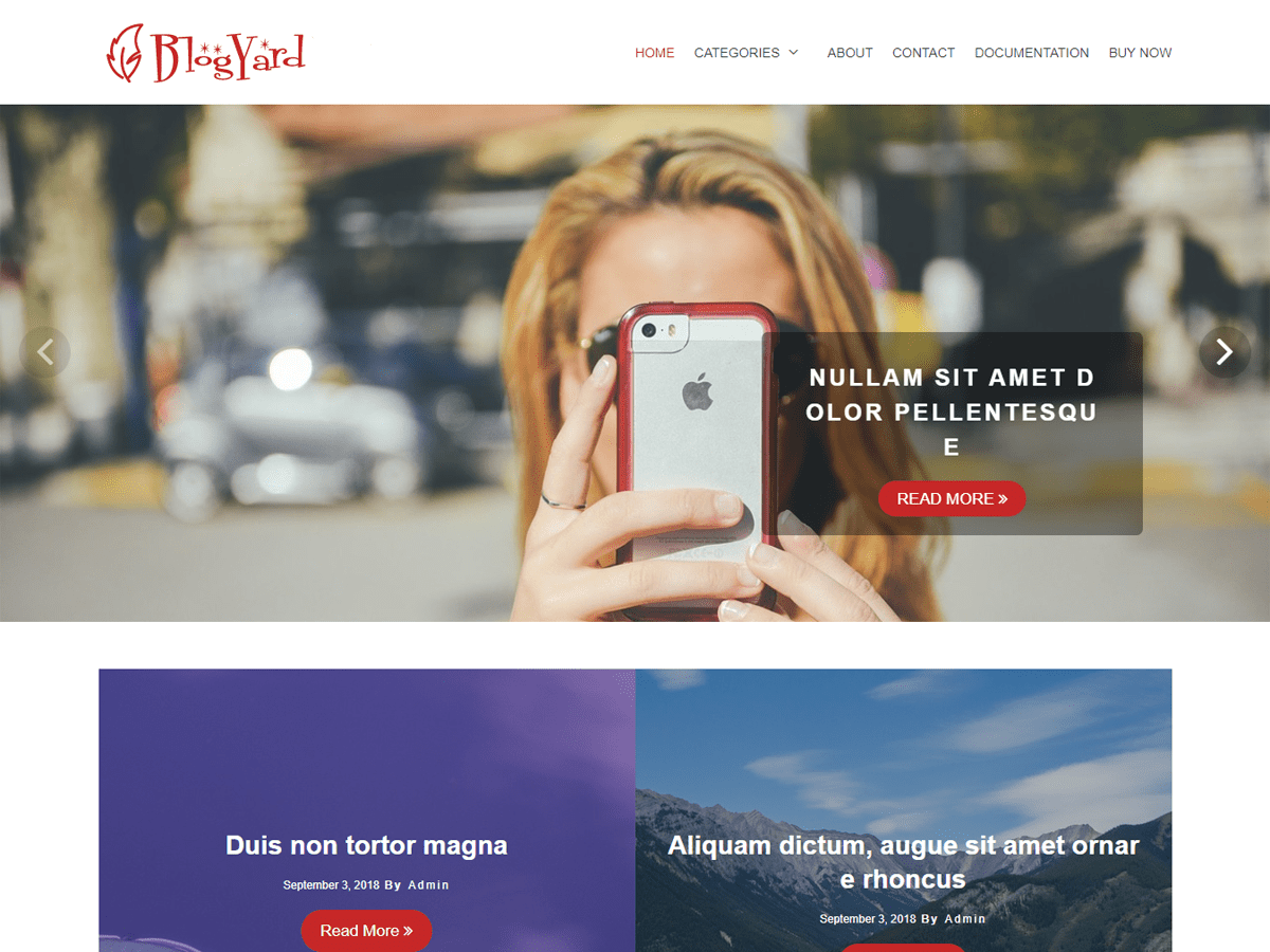 BlogYard Download Free Wordpress Theme 3