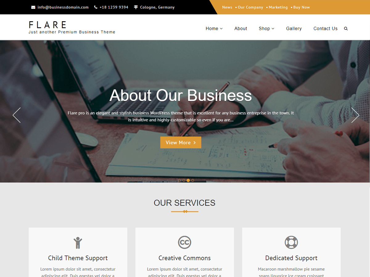 Flare Download Free Wordpress Theme 4