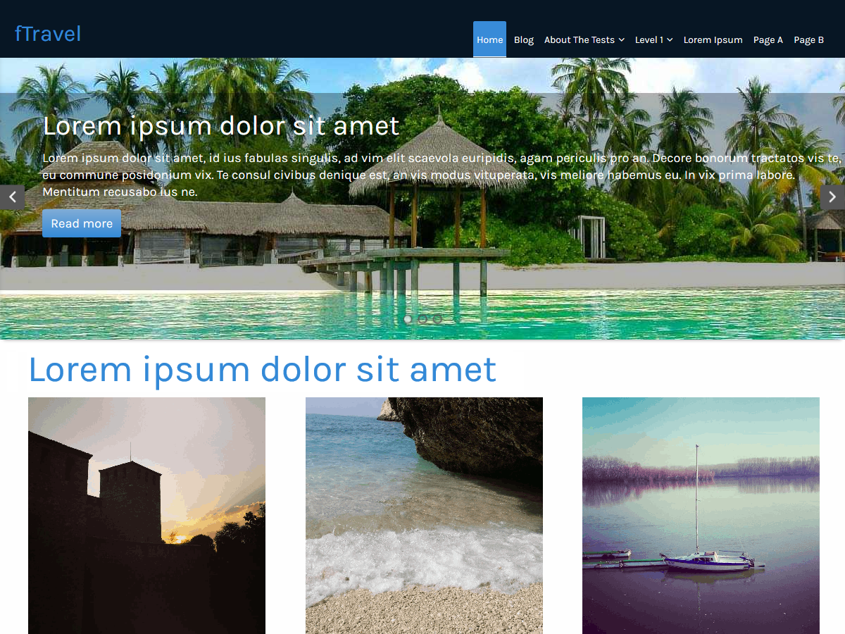 fTravel Download Free Wordpress Theme 5