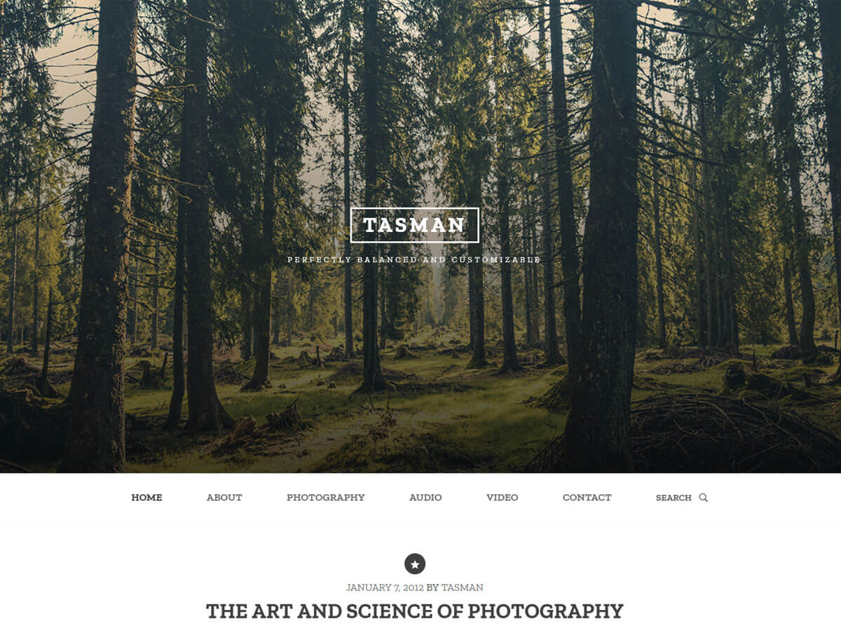 Tasman Download Free Wordpress Theme 3