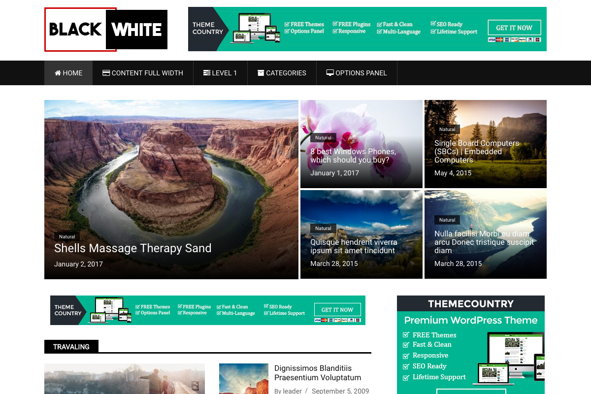 BlackWhite Lite Download Free Wordpress Theme 4