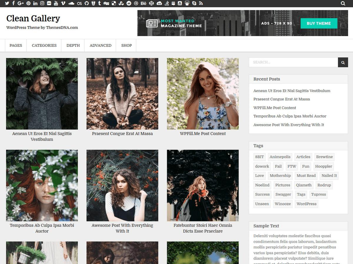 Clean Gallery Download Free Wordpress Theme 4