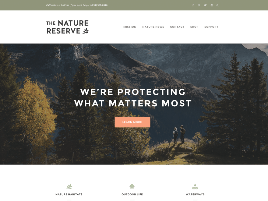 Naturelle Download Free Wordpress Theme 2