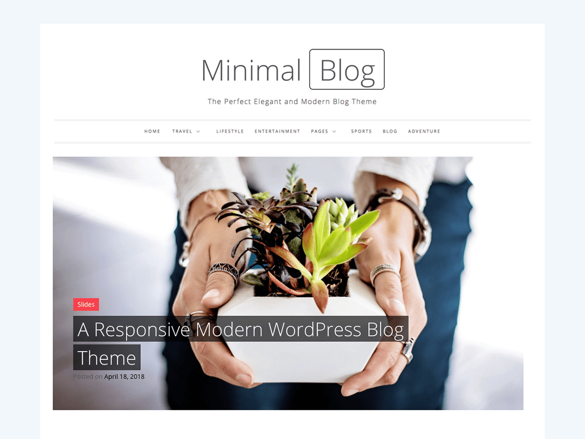 Minimal Blog Download Free Wordpress Theme 2