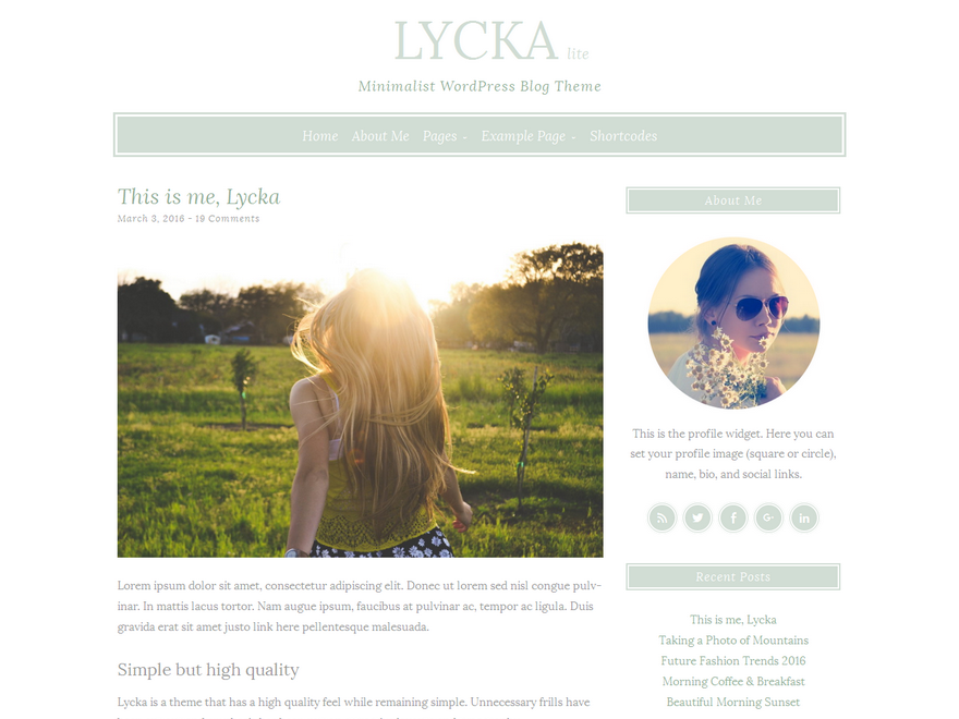 Lycka lite Download Free Wordpress Theme 5