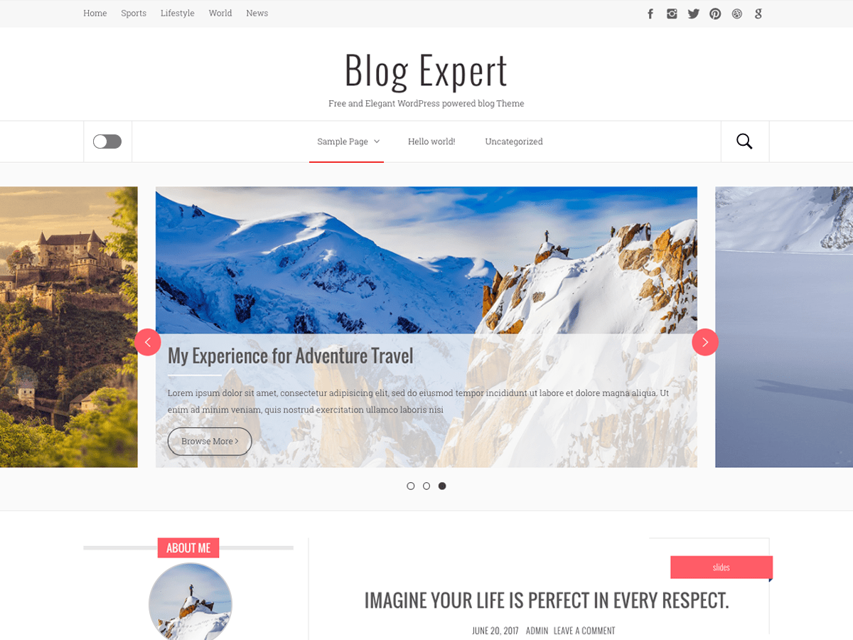 Blog Expert Download Free Wordpress Theme 2