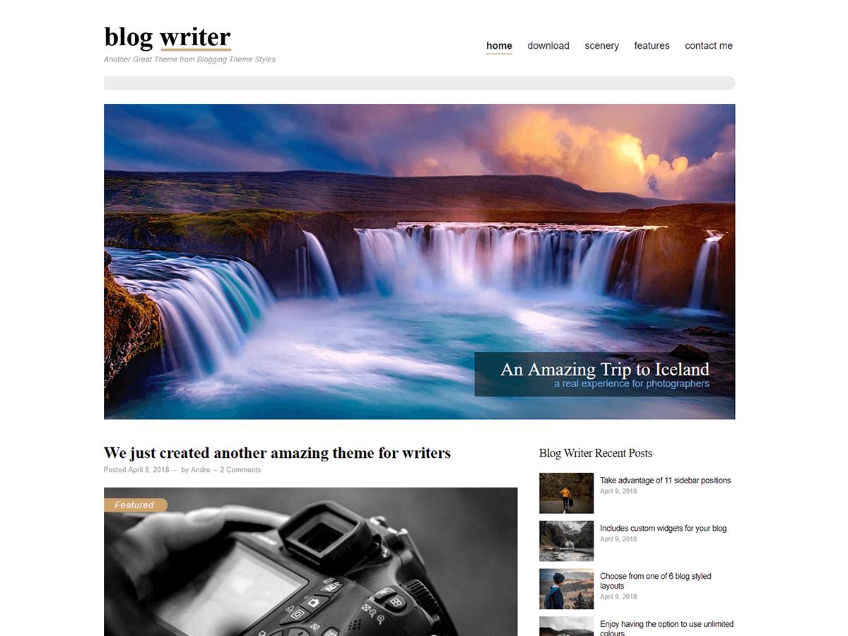 Blog Writer Download Free Wordpress Theme 1