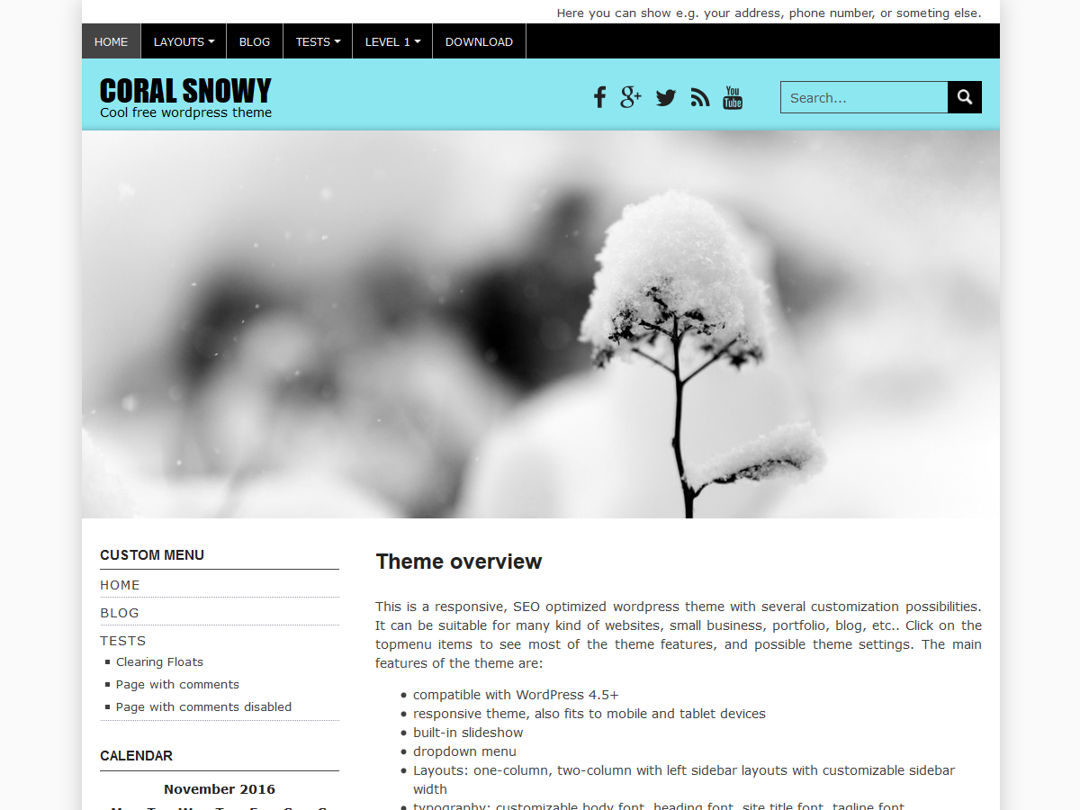 Coral Snowy Download Free Wordpress Theme 3