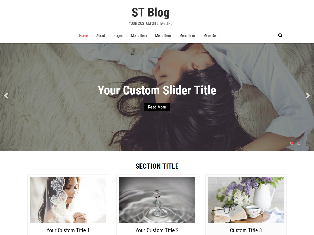 ST Blog Download Free Wordpress Theme 5