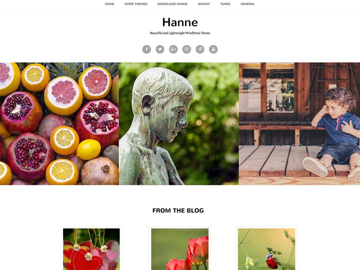 Hanne Download Free Wordpress Theme 3