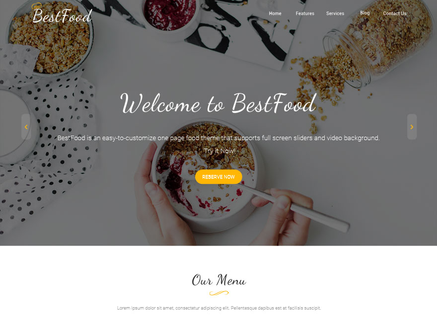 Best Food Download Free Wordpress Theme 2