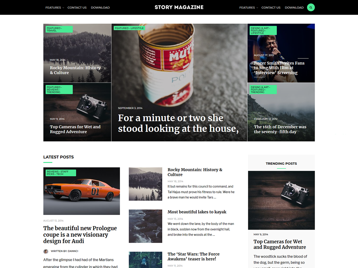 Story Magazine Download Free Wordpress Theme 1
