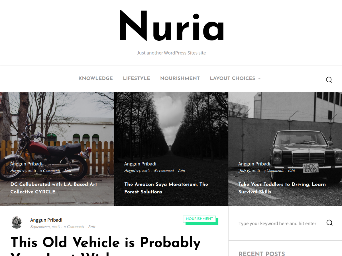Nuria Download Free Wordpress Theme 1