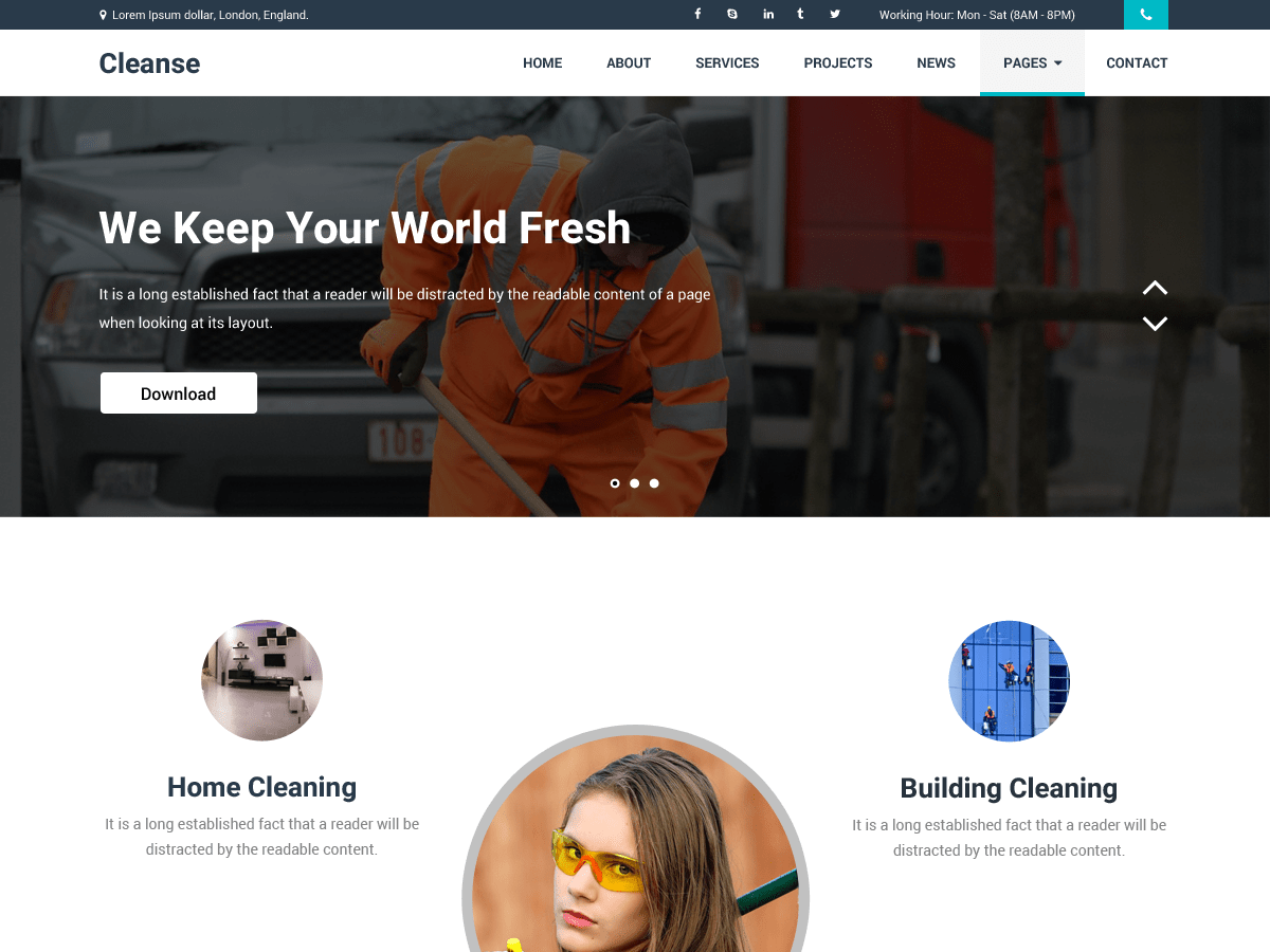 Cleanse Download Free Wordpress Theme 2