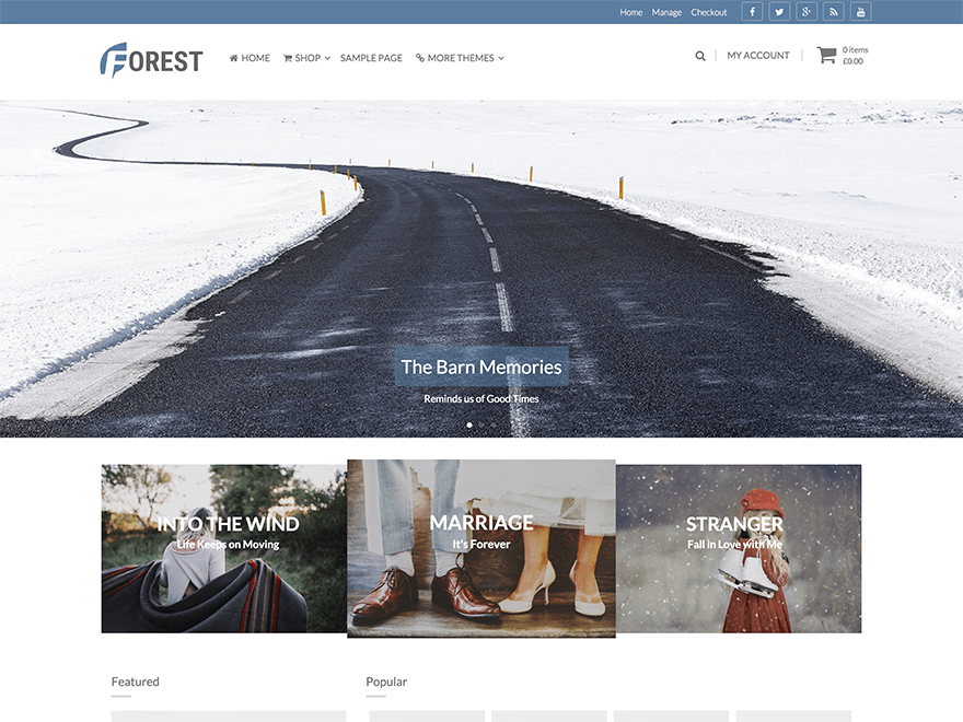 Forest Download Free Wordpress Theme 1