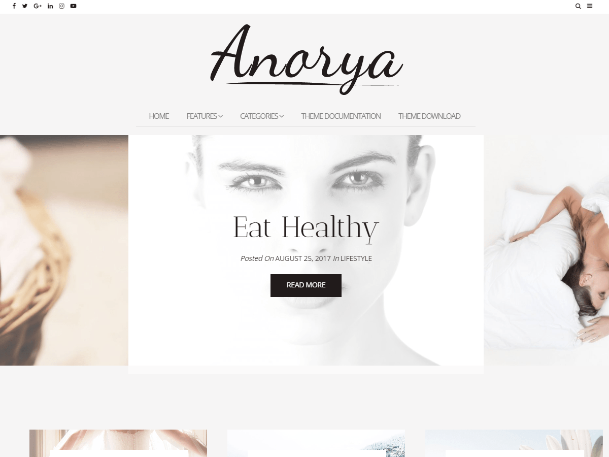 Anorya Download Free Wordpress Theme 2