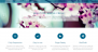 Panoramic Download Free WordPress Theme