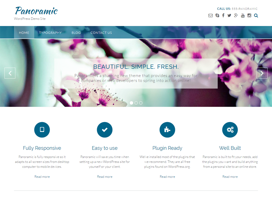 Panoramic Download Free Wordpress Theme 4