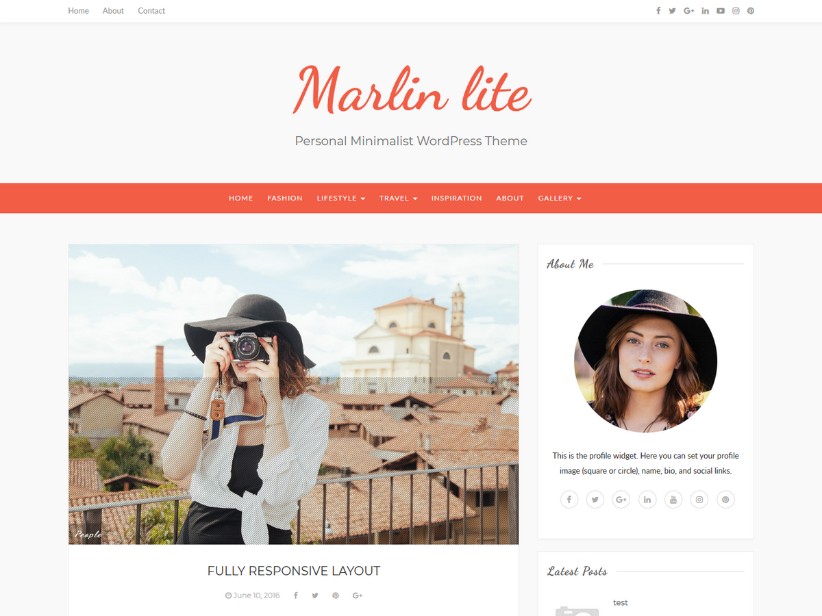 Marlin lite Download Free Wordpress Theme 1
