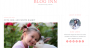 Blog Inn Download Free WordPress Theme
