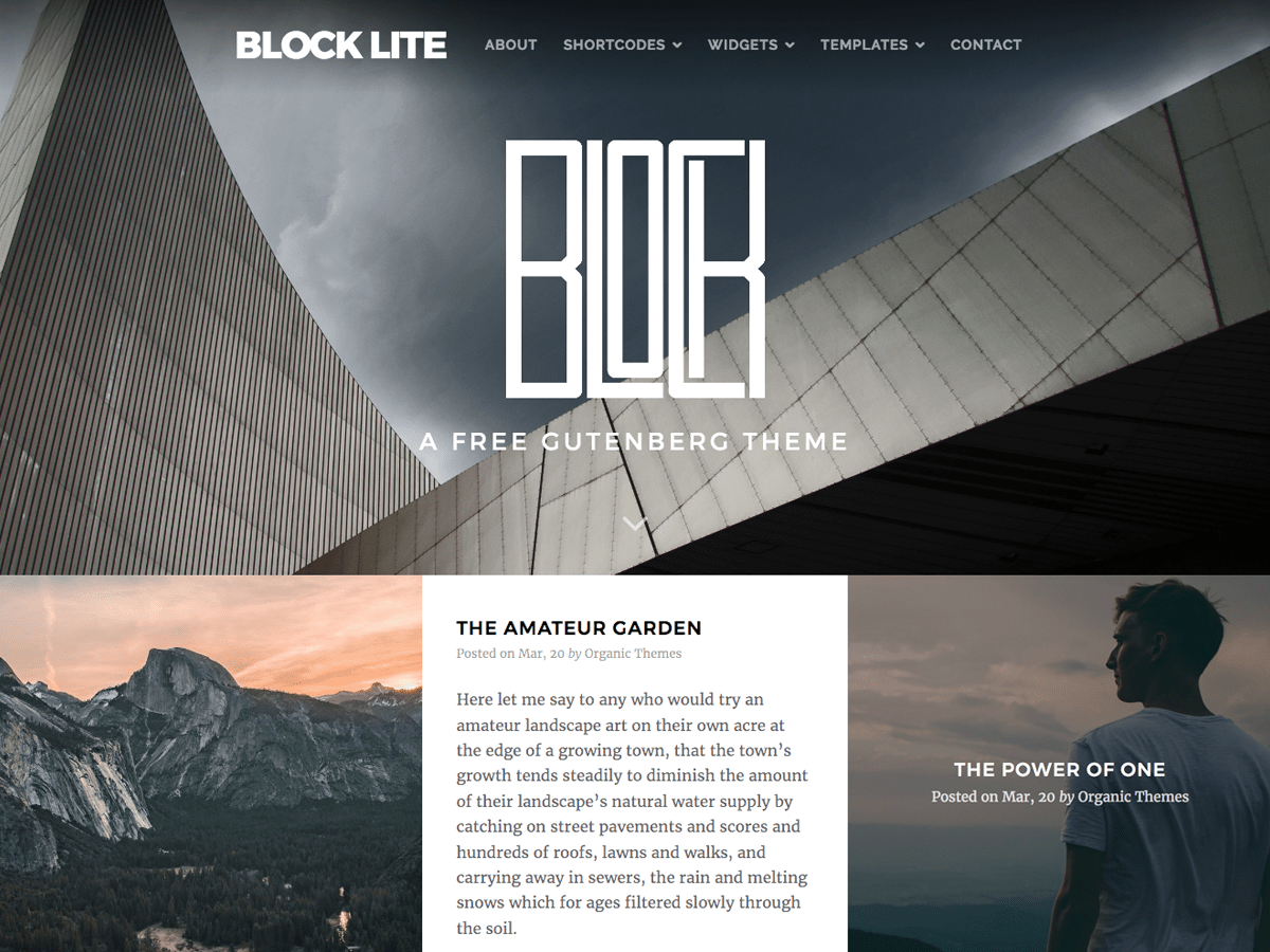 Block Lite Download Free Wordpress Theme 1