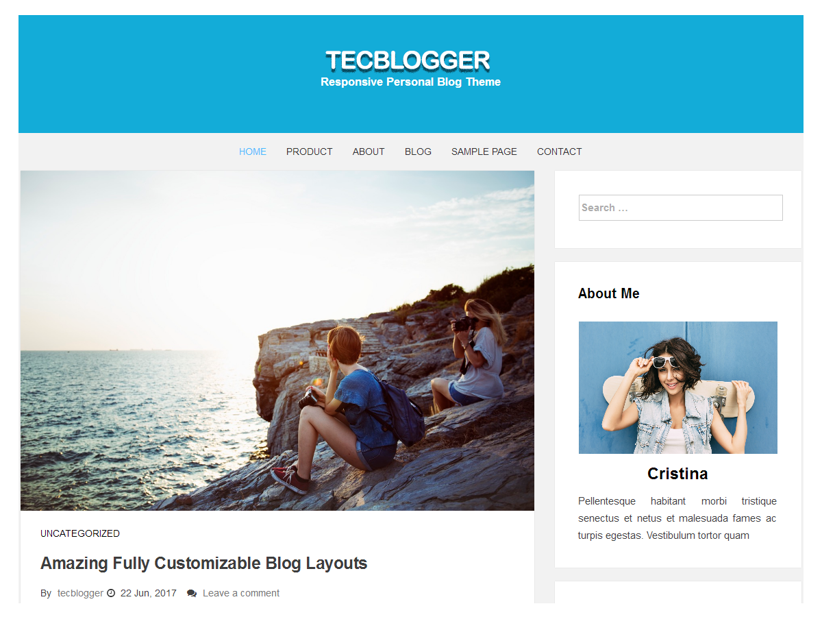 tecblogger Download Free Wordpress Theme 4