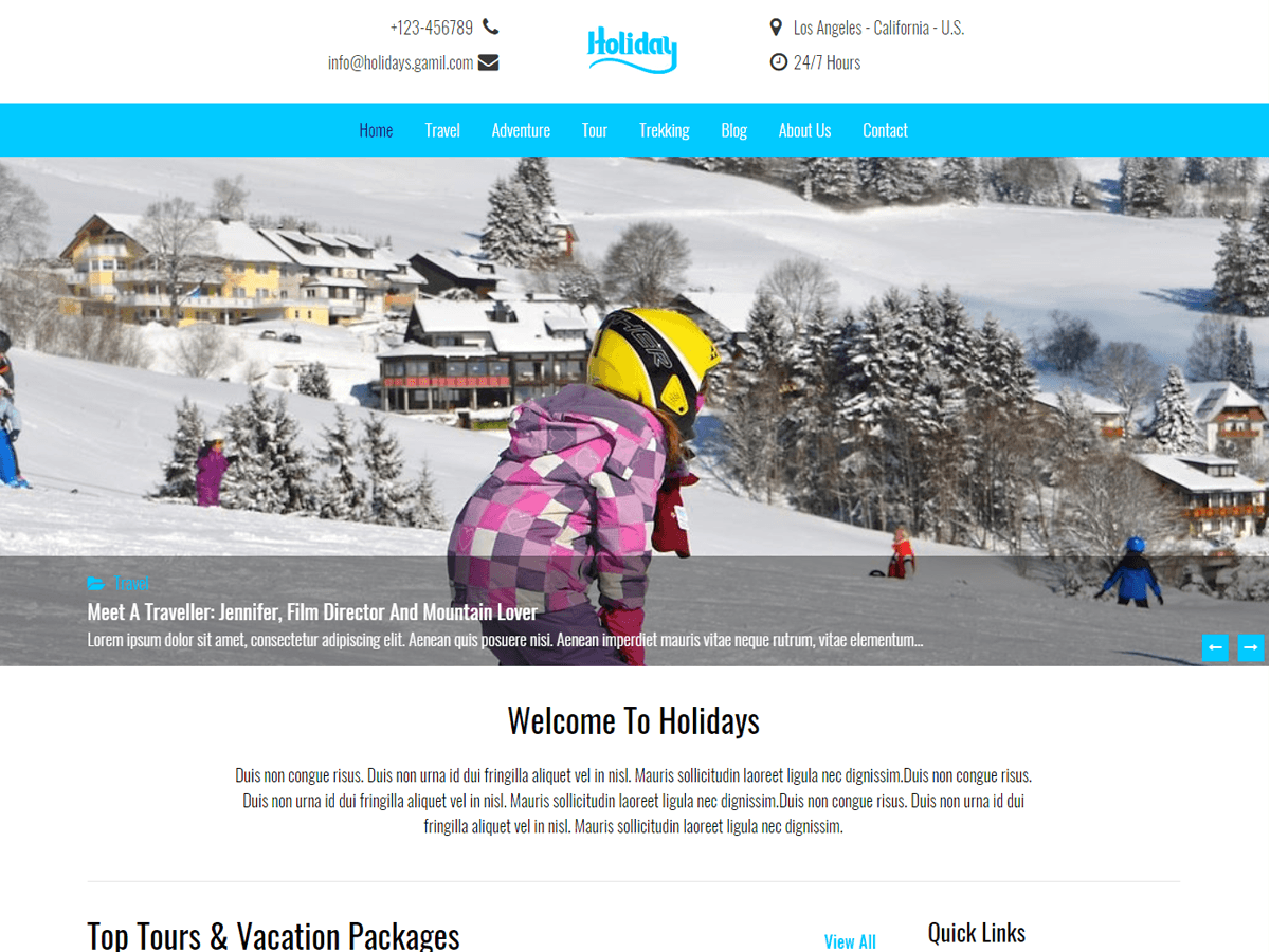 holidays Download Free Wordpress Theme 3