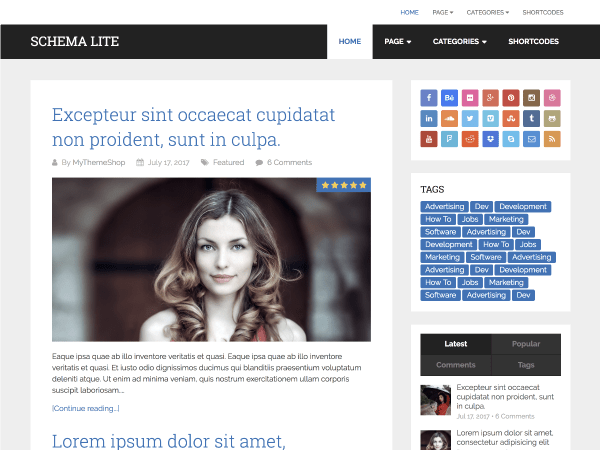 Schema Lite Download Free Wordpress Theme 4